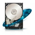 Hard disk Seagate Enterprise Capacity 3.5 HDD 500GB SATA-III 7200 RPM 64MB